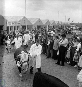 Great Yorkshire Show, 1958